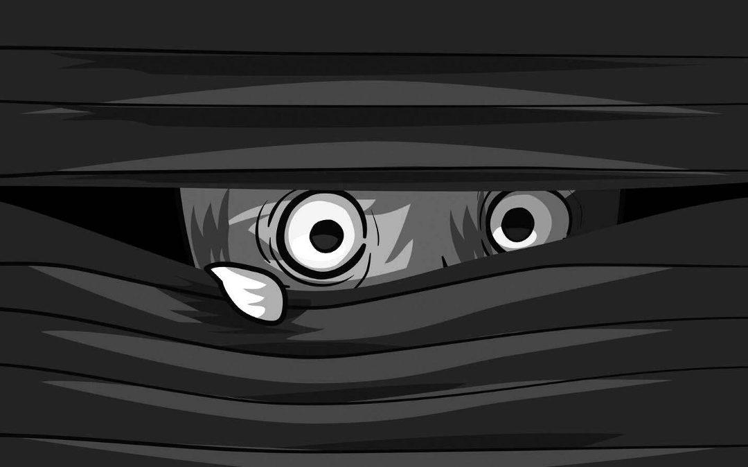 Agorafobia y ataque de pánico